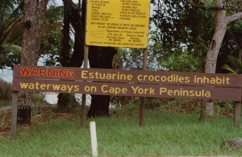 FishingCapeYorkPajinkaCrocodilewarning1996Medium.