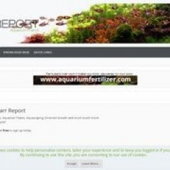 Forum - - Barr Report: Forums - Aquarium Plants